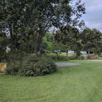 Fforest Fields Campsite, pitches