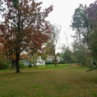 Elizabeth Park, Hartford