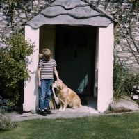 Peter at Linnington Cottage, Wambrook, Chard 1963