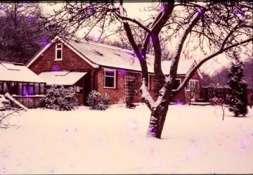Snow in Waterloo