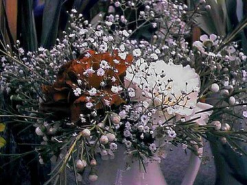 Rosemary Birthday flowers