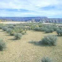 The Grand Canyon Rim