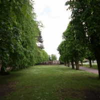 Cambridge Society, Bury St Edmunds, Cathedral grounds