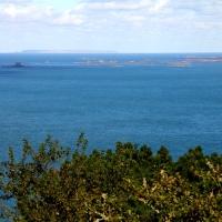 Alderney, 2010