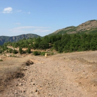 Bulgaria Naturetrek 2011