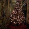 Waddesdon Manor dressed for Christmas 2012