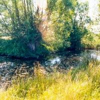 Grendon Underwood / Kingswood ponds