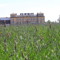 Croome Court - 26th May 2013