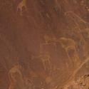 Twyfelfontein, Namibia  petroglyph
