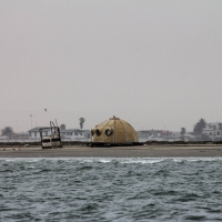 Boat trip from Walvis Bay - On the shore