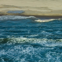 Dead whale on Namibia coast