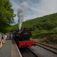 Berkshire branch of the Cambridge Society visit to Gwili Heritage Steam Railway