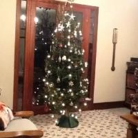 Christmas Day at Home
