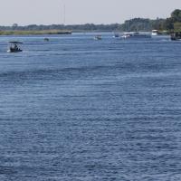 River Chobe