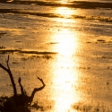 Sunset over Chobe