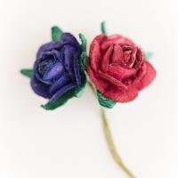 Z20-Miniature-roses