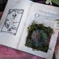 Books used as flower pots