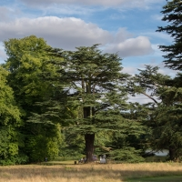 Compton Verney Art Gallery and Park
