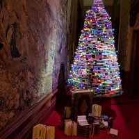 Waddesdon Manor Christmas tree lights
