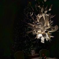 Waddesdon Manor Christmas tree lights