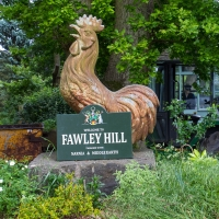 Fawley Hill