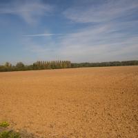Luxémont-et-Villotte - Large French field