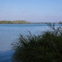 Cormoranche-sur-Saone - The river Saone