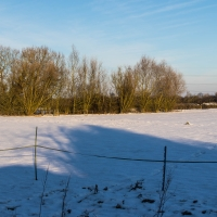 Kingswood snow