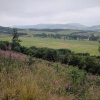 Fforest Fields Campsite