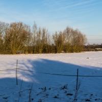 Kingswood snow