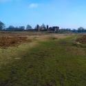Bradgate Park, Leicester