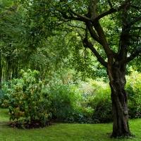 Claude Monet, Giverny