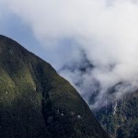 The hills around Doubtful Sound