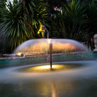 Peter and Nic's fountain