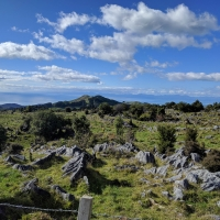Drive over the Takaka Hill