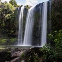 Whangarie Curtain Waterfall