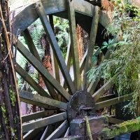 Water wheel at Mitchells Gully Gold