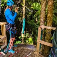 Rotorua Canopy Adventures