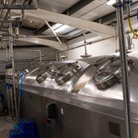Adnams brewery, beer fermenting