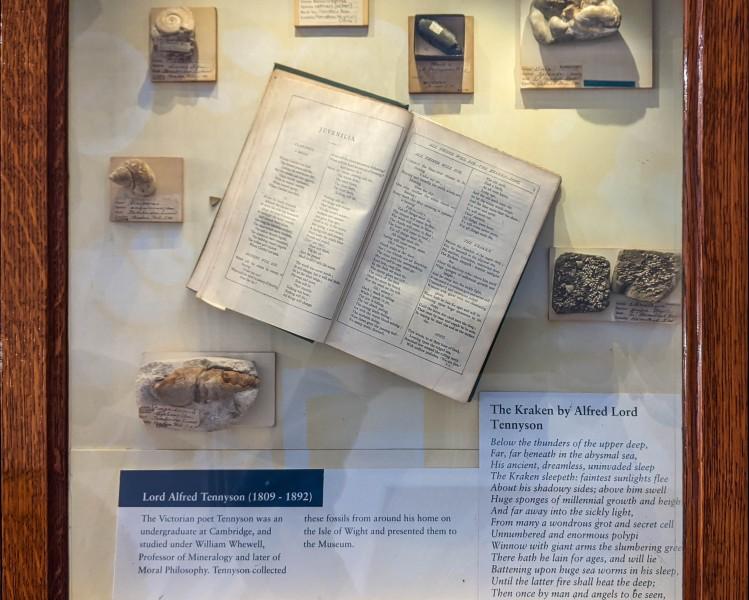 Cambridge - Sedgwick Museum of Earth Sciences