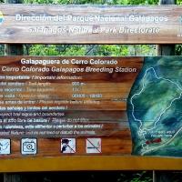 Ecuador, Galapagos San Cristobal Island, Highlands