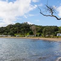 Puriri Bay Campsite